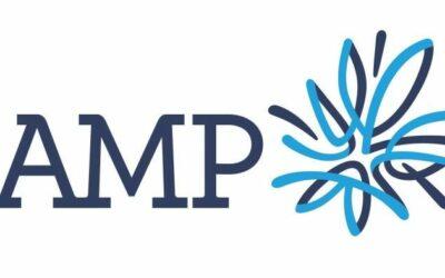 Как внедрить поддержку технологии AMP в WordPress и зачем это делать