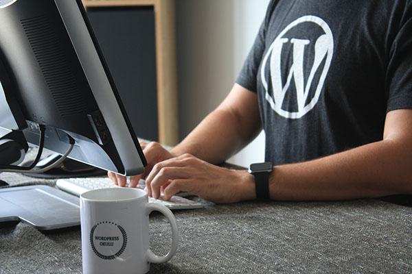 WordPress вебмастер