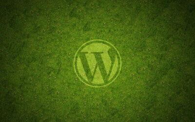 Как сделать страницу главной в WordPress
